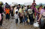 প্রতিদিন ১৩০ রোহিঙ্গা শিশু জন্ম নেবে আশ্রয় কেন্দ্রে